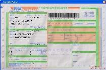 EMS广东省内特快专递邮件详情单